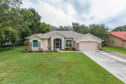 Photo of 10296 Palmgren Lane, SPRING HILL, FL 34608 (MLS # W7815289)