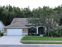Photo of 11741 Tee Time Circle, NEW PORT RICHEY, FL 34654 (MLS # W7815418)