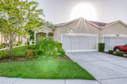 Photo of 11318 Golf Round Drive, NEW PORT RICHEY, FL 34654 (MLS # W7816484)