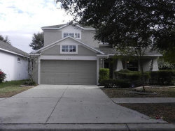 Photo of 2546 Cross More Street, VALRICO, FL 33594 (MLS # W7816983)