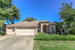Photo of 8531 Orsi Court, TRINITY, FL 34655 (MLS # W7817962)
