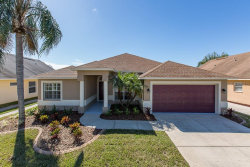 Photo of 1807 Latelia Court, TRINITY, FL 34655 (MLS # W7818035)