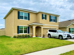 Photo of 30921 Summer Sun Loop, WESLEY CHAPEL, FL 33545 (MLS # W7818130)