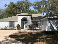 Photo of 3845 Seixas Place, LAND O LAKES, FL 34639 (MLS # W7818789)