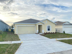 Photo of 113 Tanager Street, DAVENPORT, FL 33837 (MLS # W7819944)