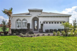 Photo of 12108 Blue Pacific Drive, RIVERVIEW, FL 33579 (MLS # W7820667)