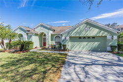 Photo of 8818 Torchwood Drive, TRINITY, FL 34655 (MLS # W7821031)
