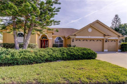 Photo of 2026 Gold Dust Court, TRINITY, FL 34655 (MLS # W7821718)