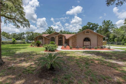 Photo of 495 Lincoln Avenue, BROOKSVILLE, FL 34604 (MLS # W7823570)