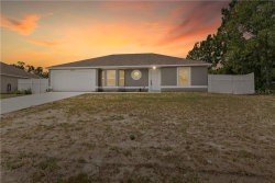 Photo of 12076 Elgin Boulevard, SPRING HILL, FL 34608 (MLS # W7824539)