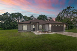 Photo of 4271 Surfside Circle, SPRING HILL, FL 34606 (MLS # W7825693)