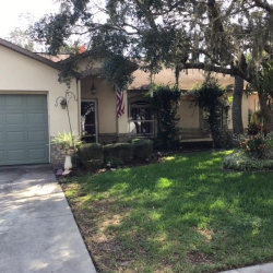 Photo of 12418 Wasatch Court, NEW PORT RICHEY, FL 34654 (MLS # W7827589)