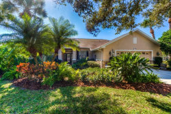 Photo of 11714 Soft Rush Terrace, LAKEWOOD RANCH, FL 34202 (MLS # A4424471)