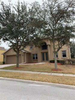 Photo of 12134 Still Meadow Drive, CLERMONT, FL 34711 (MLS # G5037632)
