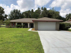 Photo of 4525 Debbie Lane, LUTZ, FL 33559 (MLS # O5735888)