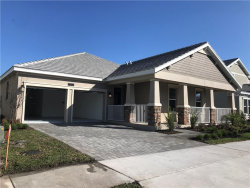 Photo of 11809 Campfire Story Lane, ORLANDO, FL 32832 (MLS # O5838268)