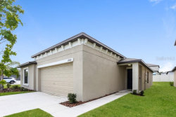 Photo of 12602 Lemon Pepper Drive, RIVERVIEW, FL 33578 (MLS # O5866337)