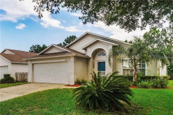 Photo of 17429 Silver Creek Court, CLERMONT, FL 34714 (MLS # O5895223)