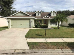 Photo of 11765 Shirburn Circle, PARRISH, FL 34219 (MLS # O5900828)