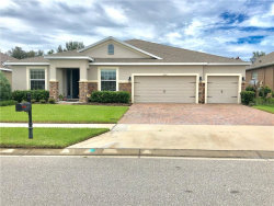 Photo of 1487 Alligator Street, SAINT CLOUD, FL 34771 (MLS # S5022218)