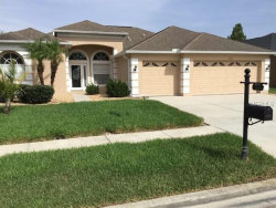 Photo of 1554 African Violet Court, TRINITY, FL 34655 (MLS # T3118927)