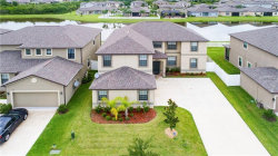 Photo of 11620 Shelby Jay Drive, RIVERVIEW, FL 33579 (MLS # T3131656)
