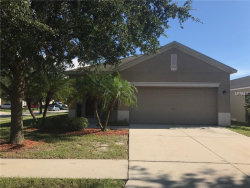 Photo of 8560 Deer Chase Drive, RIVERVIEW, FL 33578 (MLS # T3131942)