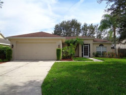 Photo of 4010 Banbury Circle, PARRISH, FL 34219 (MLS # T3136596)