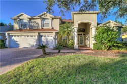 Photo of 17378 Emerald Chase Drive, TAMPA, FL 33647 (MLS # T3137577)