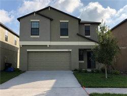Photo of 13907 Arbor Pines Drive, RIVERVIEW, FL 33579 (MLS # T3141509)
