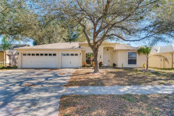 Photo of 11217 Andy Drive, RIVERVIEW, FL 33569 (MLS # T3141785)