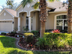 Photo of 3303 Marble Crest Drive, LAND O LAKES, FL 34638 (MLS # T3151009)