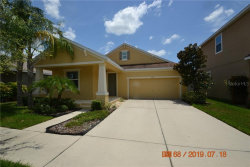 Photo of 6919 Rocky Canyon Way, TAMPA, FL 33625 (MLS # T3187923)