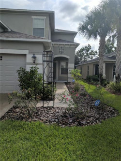Photo of 7859 Tuscany Woods Drive, TAMPA, FL 33647 (MLS # T3188029)