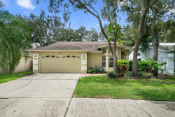Photo of 2615 Wrencrest Circle, VALRICO, FL 33596 (MLS # T3192086)