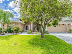 Photo of 10222 Moshie Lane, SAN ANTONIO, FL 33576 (MLS # T3197322)