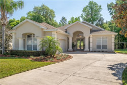 Photo of 12350 Woodlands Circle, DADE CITY, FL 33525 (MLS # T3198161)