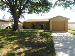 Photo of 905 Old Field Drive, BRANDON, FL 33511 (MLS # T3199649)