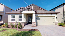 Photo of 4171 Welling Terrace, LAND O LAKES, FL 34638 (MLS # T3204864)