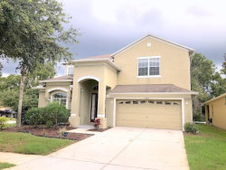 Photo of 18456 Red Willow Way, LAND O LAKES, FL 34638 (MLS # T3208930)