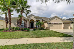 Photo of 3318 Marble Crest Drive, LAND O LAKES, FL 34638 (MLS # T3220042)