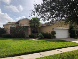 Photo of 11027 Holly Cone Drive, RIVERVIEW, FL 33569 (MLS # T3225430)