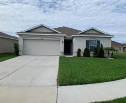 Photo of 14527 Haddon Mist Drive, WIMAUMA, FL 33598 (MLS # T3226554)