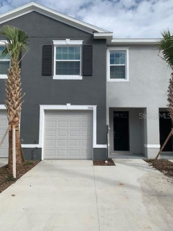 Photo of 3328 Pleasant Willow Court, BRANDON, FL 33511 (MLS # T3226576)