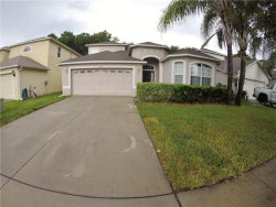 Photo of 15830 Cedar Elm Terrace, LAND O LAKES, FL 34638 (MLS # T3227221)