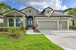 Photo of 13845 Moonstone Canyon Drive, RIVERVIEW, FL 33579 (MLS # T3234333)