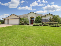 Photo of 13704 Carryback Drive, DADE CITY, FL 33525 (MLS # T3234584)