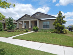 Photo of 14132 Barrington Stowers Drive, LITHIA, FL 33547 (MLS # T3242565)
