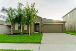 Photo of 211 English Channel Place, DOVER, FL 33527 (MLS # T3258322)