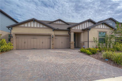 Photo of 18717 Birchwood Groves Drive, LUTZ, FL 33558 (MLS # T3273011)